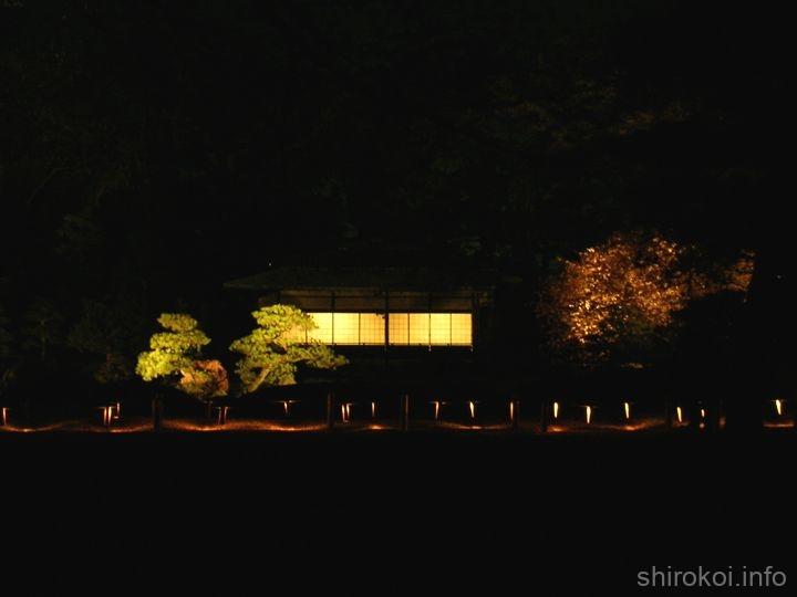 建物のライトアップも素敵