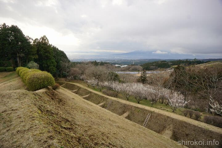 岱崎出丸から西側の一ノ堀を眺める