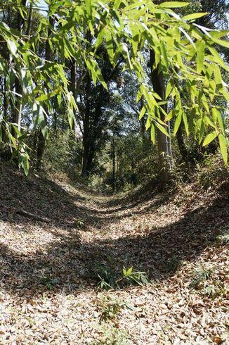 ニノ曲輪、三ノ曲輪の間の堀