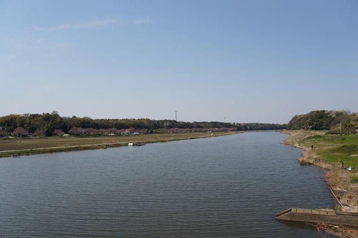 稲荷川 左側は東林寺城のある山