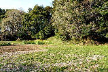 牛久陣屋 河童と土塁と堀と木々と。~牛久沼周辺の城を巡る旅④