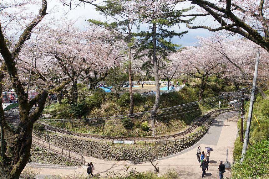小田原城 遊園地