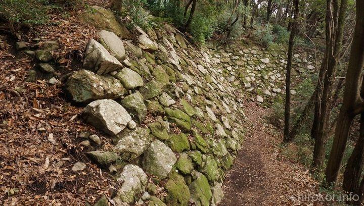 二ノ丸 西北部下段の高石垣