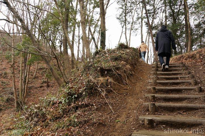 皆川城で一番高い場所、本丸を目指して登る!