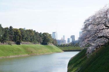 江戸城 お濠と桜