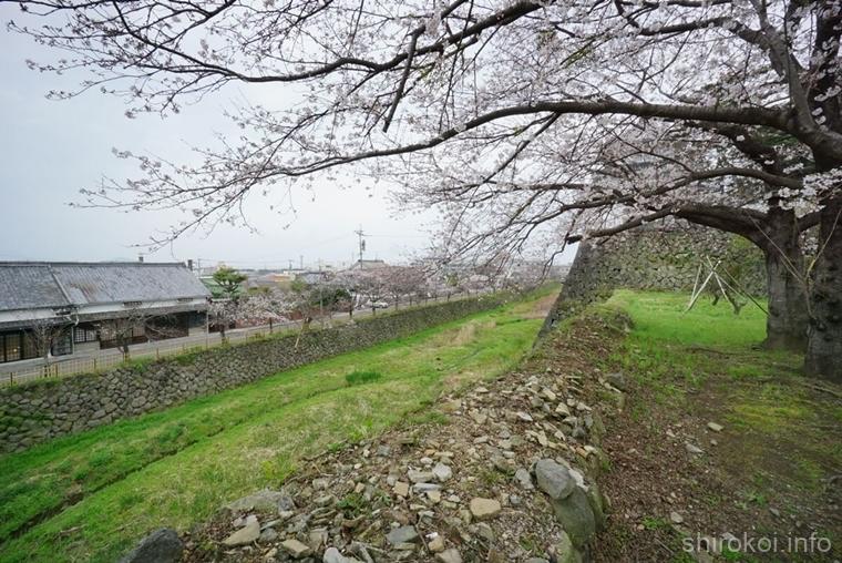 丑寅の櫓と桜