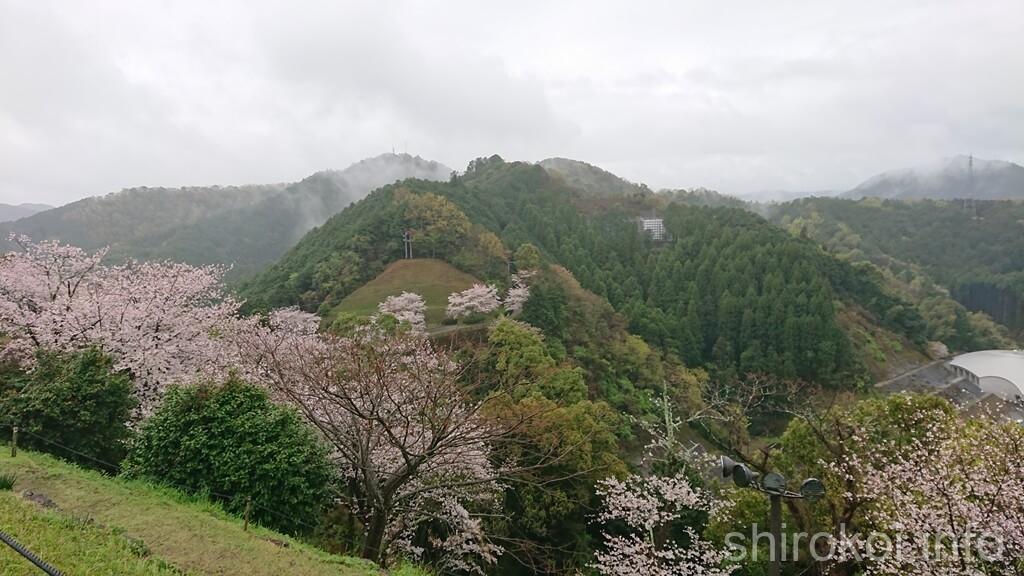 佐敷城 桜の季節がおすすめです