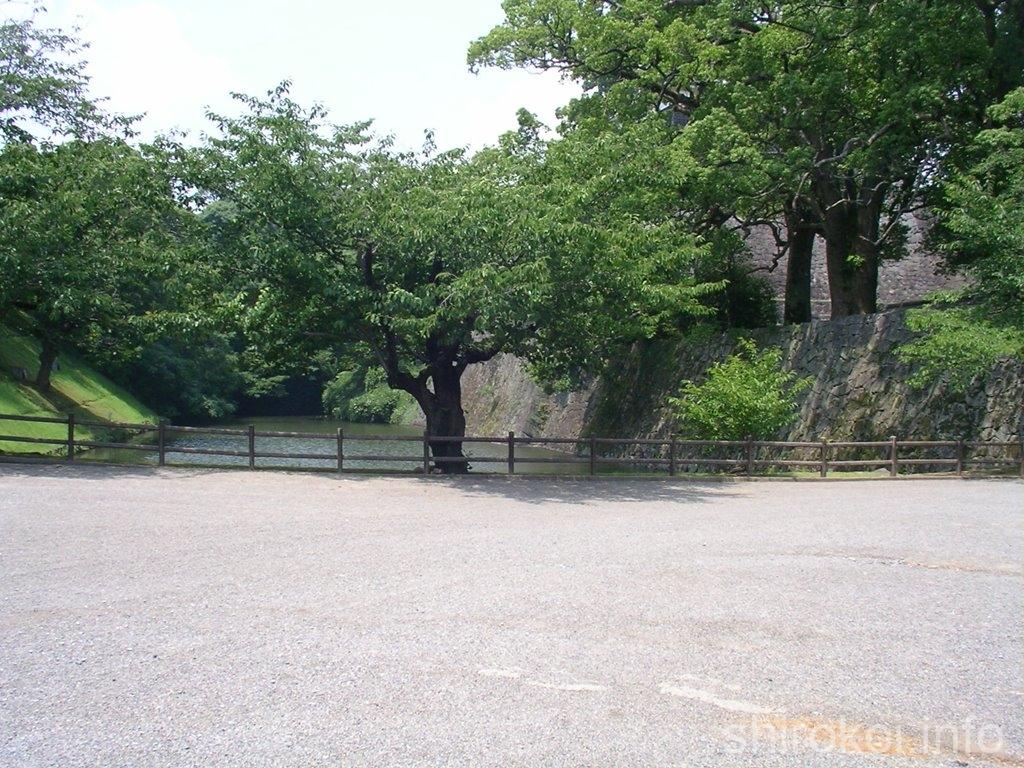 熊本城 備前堀
